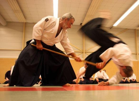 Jan Hans 2010 aikido jodo 14 januari 219